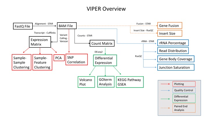 viper_overview
